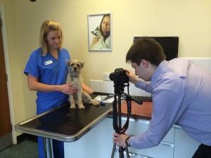 Vanessa WXV filming vets